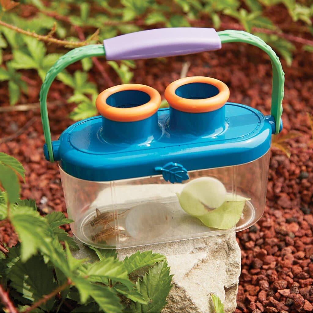 boite à insectes avec loupe